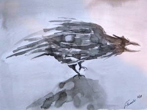 "Baby Crow.  Pen & Inn.  8""x10"" (Dorothy Menosky Collection; Copy 1: Dorothy King; Copy 2: Kathy Egawa)"