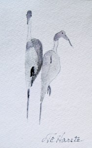 Herons:  Watercolor (2 1/2 x 3 1/2) Art Card