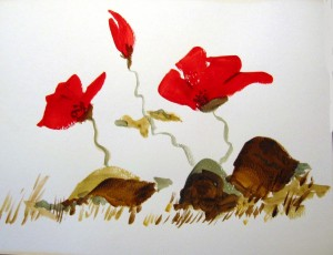 "Poppies. Watercolor 12""x16"" (Jason & Mary Harste Collection)"